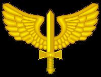 2000px-COA_of_Brazilian_Air_Force.pequenosvg