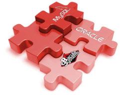 Sumário Executivo Bacula Enterprise Software de Backup 5