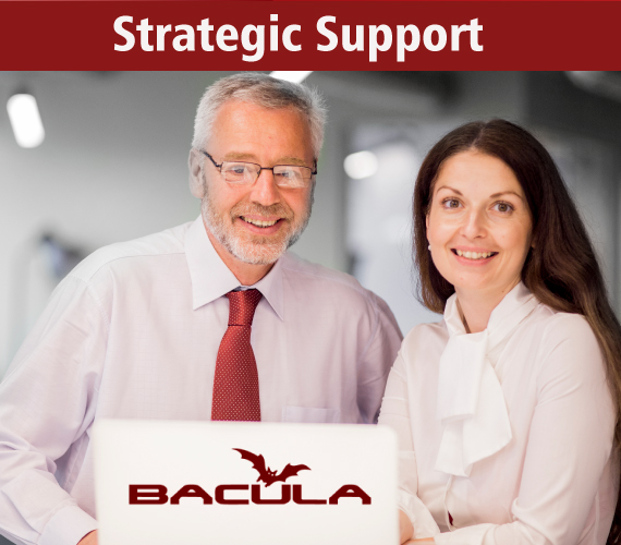 Bacula Support: Strategic Partnership for Your Company