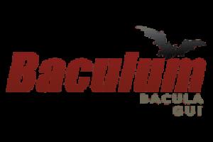 Baculum 9 – Configuración Gráfica de Bacula, Administración y API