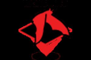 Instalação Bacula Enterprise Kickstart para POC, testes, demo etc.