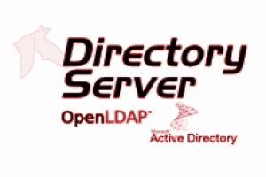 LDAP/Active Directory Enterprise Bacula Plugin Quick Guide