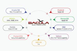 Bases de datos en Bacula Enterprise