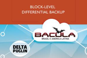 Bacula Enterprise Delta Plugin