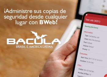 Home Office? ¡Administre sus Backups desde cualquier lugar con BWeb!