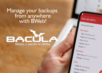 Home Office? Manage your Backups from anywhere with BWeb!