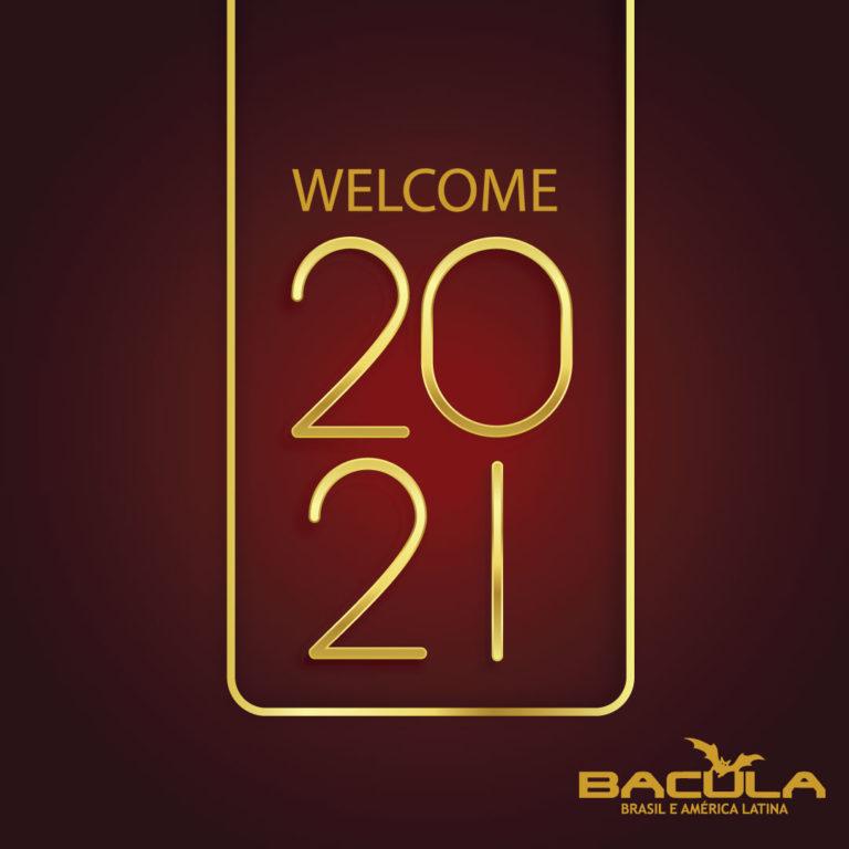 bem vindo 2021 welcome 2021 ¡Bienvenido 2021!